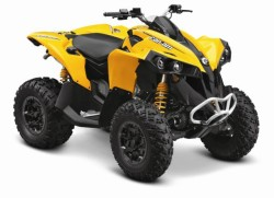 Renegade 800 Std Yellow